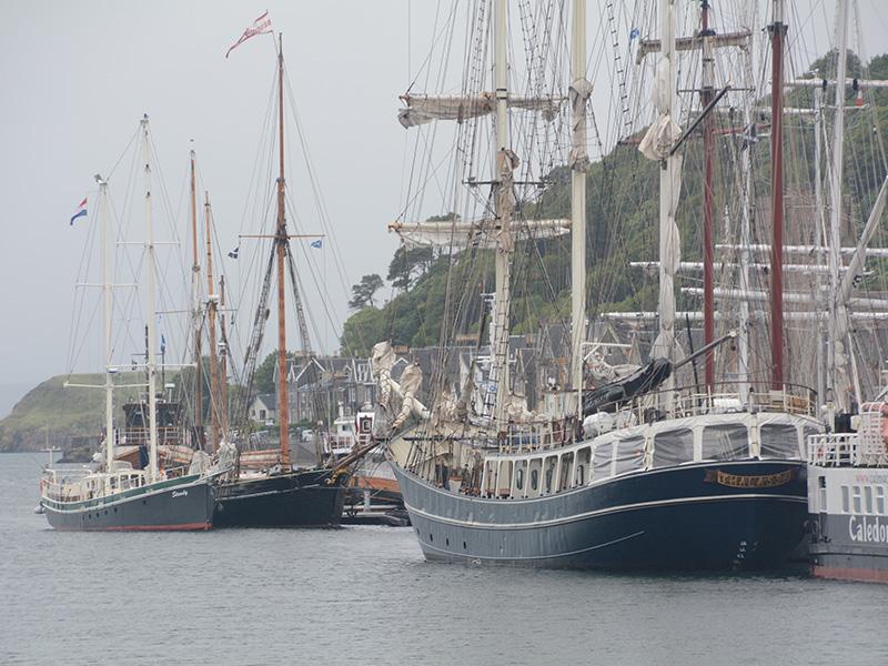 Boot Thalassa Nebel Hafen Mco Sailing